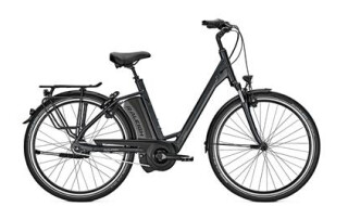 Raleigh Boston XXL von 2Rad Weigang, 48159 Münster