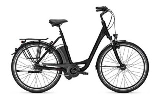 Raleigh Dover XXL, Damen E-Bike, 170 kg Gesamtgew. Akku: 17.0 Ah, 8-Gang Nabenschaltung, Rücktrittbremse. von Henco GmbH & Co. KG, 26655 Westerstede