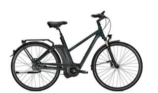 Raleigh Newgate Premium von Fahrrad-intra.de, 65936 Frankfurt-Sossenheim