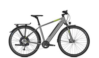 Raleigh Stanton 9 von Bike Service Gruber, 83527 Haag in OB