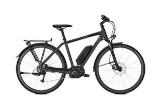 Raleigh Stoker B8 von Fahrrad Wollesen, 25927 Aventoft