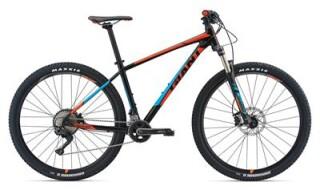 GIANT Talon 0 von Fahrrad Wollesen, 25927 Aventoft