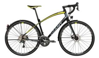 GIANT Anyroad Ex von Fahrrad Wollesen, 25927 Aventoft