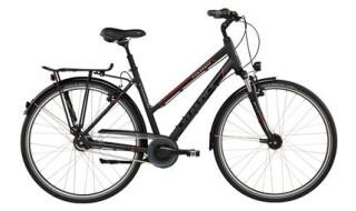 GIANT Tourer STA von Fahrrad Wollesen, 25927 Aventoft