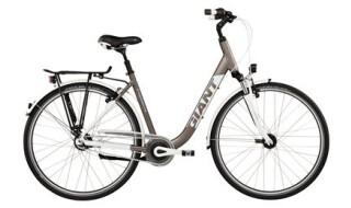 GIANT Tourer LDS von Rad+Tat Fahrradhandel GmbH, 59174 Kamen
