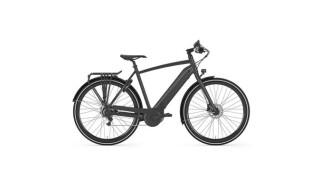 Gazelle CityZen C8+ Bosch Aktiv Plus 500Wh von Stefan's Fahrradshop, 26427 Esens