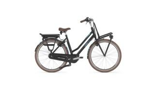 Gazelle Miss Grace C7+ HMB von Fahrrad Wollesen, 25927 Aventoft