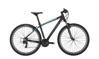 Conway MS329 von Drahtesel Fahrräder und mehr..., 23554 Lübeck