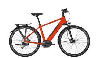 Kalkhoff Endeavour Excite B11 von Fahrrad Wollesen, 25927 Aventoft