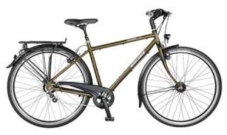 Velo de Ville CM 250 Diamant (Custom made Bike) von Eimsbütteler Fahrradladen, 20259 Hamburg
