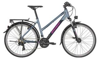 Bergamont Bergamont Bike Revox Lady silver/dark grey/berry  2019 von Fahrrad Imle, 74321 Bietigheim-Bissingen