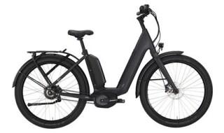 Victoria RAD E-URBAN 13.9 WAVE ENV. GREY MATT/SILVER von bikeschmiede-Ahl, 63628 Bad Soden Salmünster