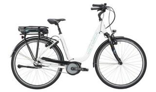 Victoria 5.6SEC von Mattheß` Bike Shop, 06901 Kemberg