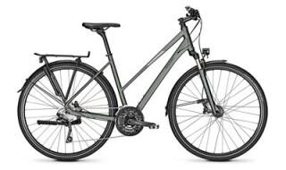 Raleigh Rushhour 6.0 von Fahrrad intra, 65936 Frankfurt-Sossenheim