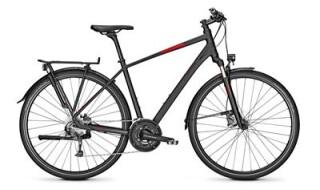 Raleigh Rushhour 3.0 von Fahrrad intra, 65936 Frankfurt-Sossenheim