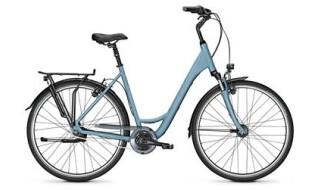 Raleigh Road Classic 7 - 2019 von Erft Bike, 50189 Elsdorf