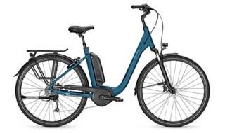 Raleigh Kingston 9 von Vilstal-Bikes Baier, 84163 Marklkofen