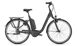 Raleigh Kingston 8R - 2020 von Erft Bike, 50189 Elsdorf