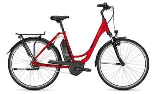 Raleigh Jersey plus FL von Vilstal-Bikes Baier, 84163 Marklkofen