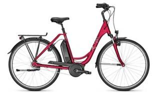 Raleigh Jersey Edition rot von Fahrrad Imle, 74321 Bietigheim-Bissingen