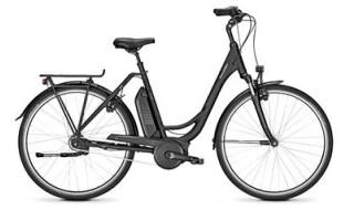Raleigh Jersey 7R von Zweirad Brust GmbH, 26524 Hage