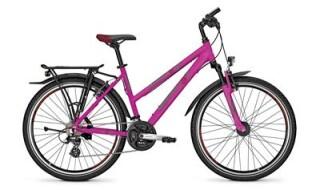 Raleigh Funmax von Bike Service Gruber, 83527 Haag in OB