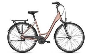 Raleigh Chester 8 - 2019 von Erft Bike, 50189 Elsdorf