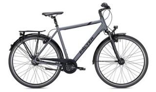 FALTER C 6.0, Citybike mit 8-Gang Nabenschaltung, Rücktrittbremse. Herren von Henco GmbH & Co. KG, 26655 Westerstede