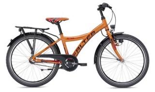 Falter FX 403 von Zweirad Brüstle, 75031 Eppingen