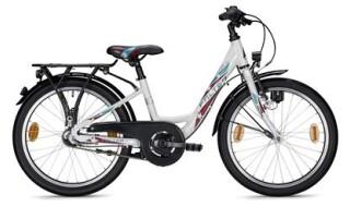 FALTER FX203 20 Zoll von Prepernau Fahrradfachmarkt, 17389 Anklam