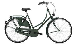 Falter H 1.0 von Fahrradhaus Scholz, 22415 Hamburg