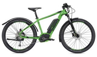 Morrison Cree 1-S 2019 von Radsport Nagel, 91074 Herzogenaurach