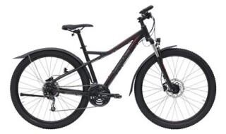 Hercules Cross Comp - 2019 von Erft Bike, 50189 Elsdorf