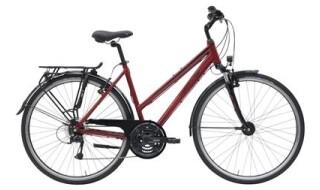 Hercules Tourer 21 - 2019 von Erft Bike, 50189 Elsdorf