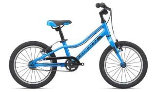 GIANT ARX 16 von Rad-Sportshop Odenwaldbike, 64653 Lorsch