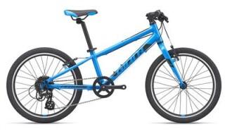 GIANT ARX 20 von Rad-Sportshop Odenwaldbike, 64653 Lorsch