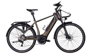 e-bike manufaktur 19ZEHN von conRAD Fahrräder in Findorff, 28215 Bremen