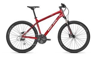 Univega Vision 4.0 - 2019 von Erft Bike, 50189 Elsdorf