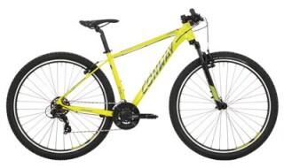 Conway MS 329 von Downhill Fahrradfachgeschäft, 32105 Bad Salzuflen