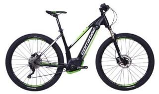 Corratec E-Power X Vert Elite 29 Trapez von Zweirad Eidenhammer, 83410 Laufen