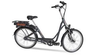 Draisin KOS Elektrorad von Bike Service Gruber, 83527 Haag in OB