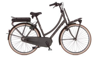 Cortina E-U4 Transport Raw von Rad+Tat Fahrradhandel GmbH, 59174 Kamen