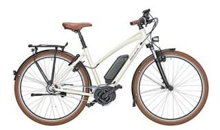 Riese und Müller Cruiser Mixte vario urban von fahrradfuchs ebike erlebniswelt, 64521 Groß-Gerau