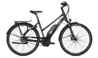 Falter Modell 2020 E 9.5 RT, 140kg zulässiges Gesamtgewicht, Bosch Antrieb, Akku 500 Wh, von Henco GmbH & Co. KG, 26655 Westerstede
