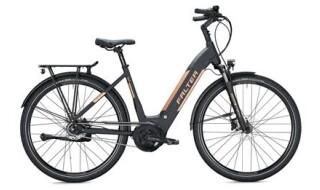 Falter E 9.8  RT von Rad+Tat Fahrradhandel GmbH, 59174 Kamen