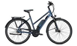 FALTER E 9.0 FL von Vilstal-Bikes Baier, 84163 Marklkofen