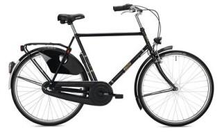 FALTER Classic Bike H 1.0, HE, Schwarz 2021 von Henco GmbH & Co. KG, 26655 Westerstede