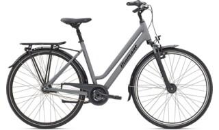 Diamant Achat von Mattheß` Bike Shop, 06901 Kemberg
