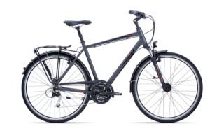 GIANT Argento von Zweirad-Center Schicketanz, 04924 Bad Liebenwerda