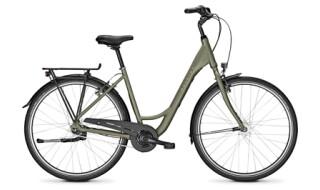 Raleigh Devon 7, Wave, Urbangreen matt von Bike & Co Hobbymarkt Georg Müller e.K., 26624 Südbrookmerland
